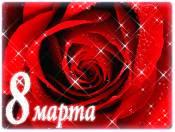 Роза к 8 марта